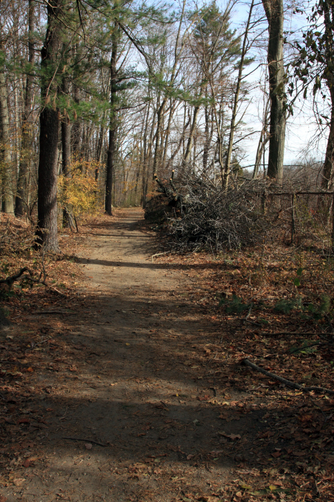 autumn trail enjoyed by the Redding CT customers of Oak Ridge Waste