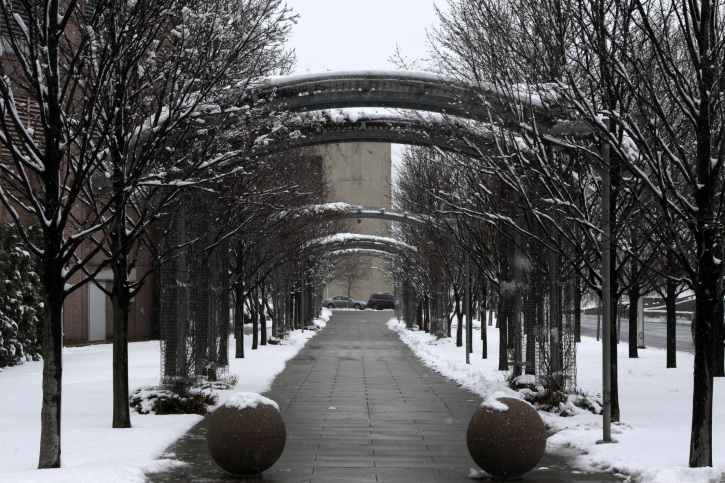Oak Ridge Waste keeps this snowy pathway clean with excellent waste services